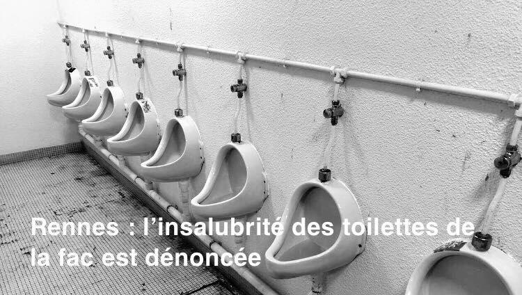 Rennes. L'insalubrité des toilettes de la fac de droit est dénoncée