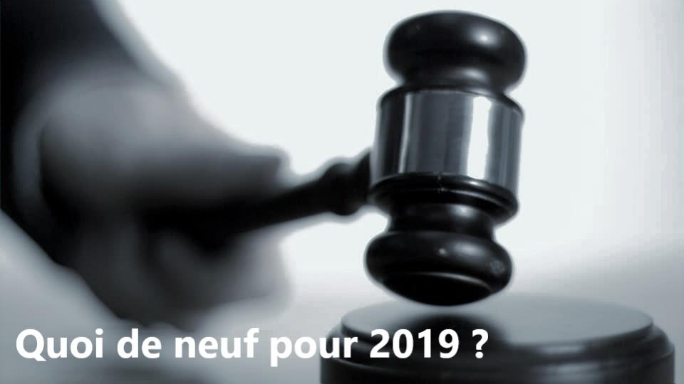 Loi. Procès, Loi Pacte, taxes… Quoi de neuf pour 2019 ?