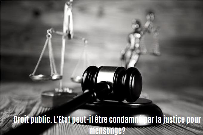 Droit public. L'Etat peut-il être condamné par la justice pour mensonge ?