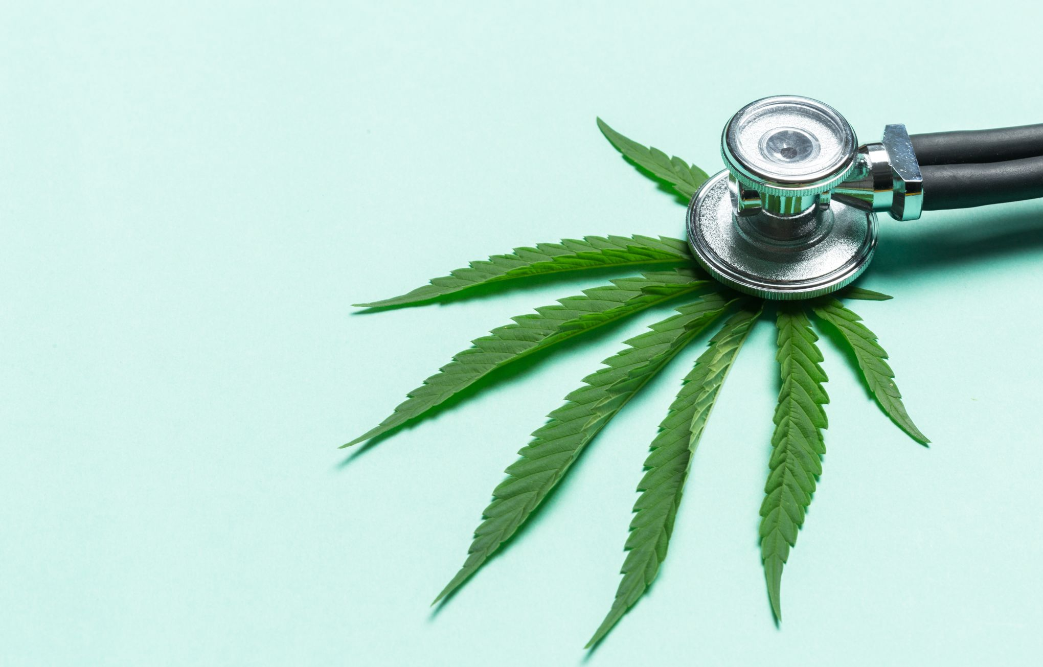 Droit de la santé. Cannabis thérapeutique en France.